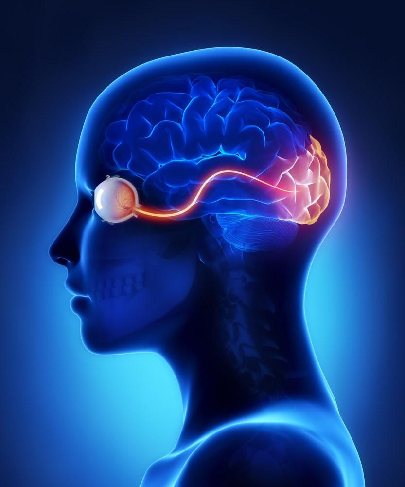 Картинка мозговой центр рен проснулся