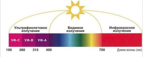 Инфографика, показывающая длину волн.